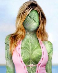 капуста для похудения, польза капусты