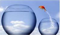 как побороть неуверенность в себе, уверенность в себе, страх