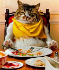 правильный ужин, здоровый ужин